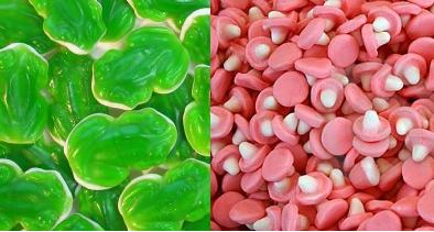 bonbons.PNG