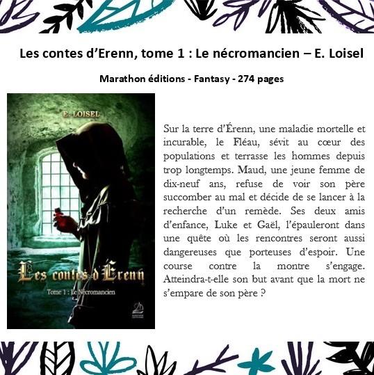 Contes d'Erenn.jpg